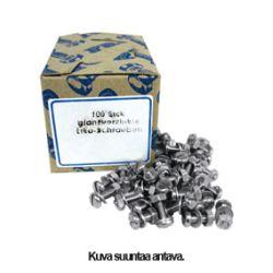 Ruuvi+Mutteri+Aluslevy M6x45mm
